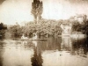 1904-01